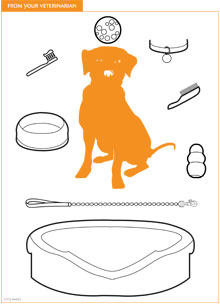 Client Handout Pet Care Coloring Pages Pet Clinic Pet Care Veterinarian