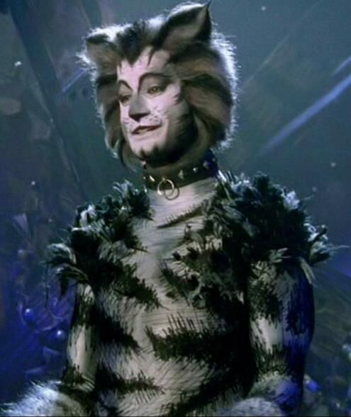 Munkustrap Cat Movie Jellicle Cats Cats Musical