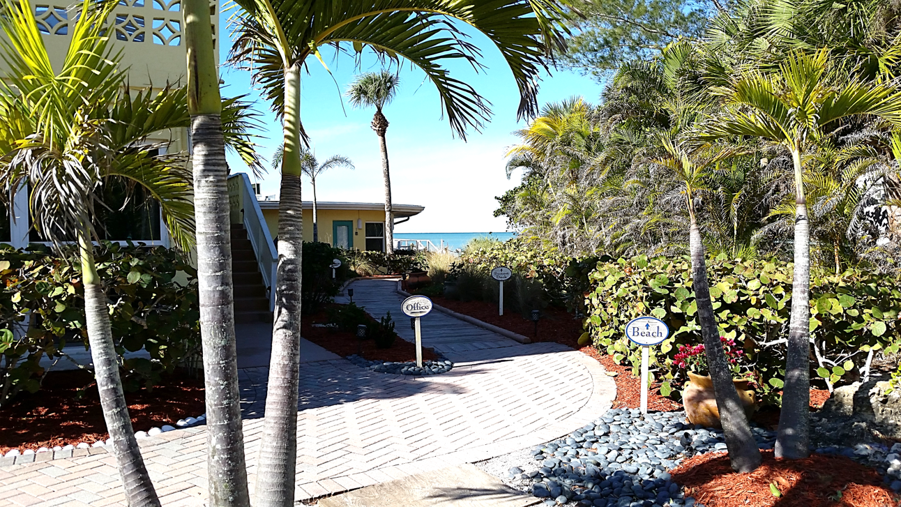 This way to the beach! | Pearl beach, Florida hotels ...