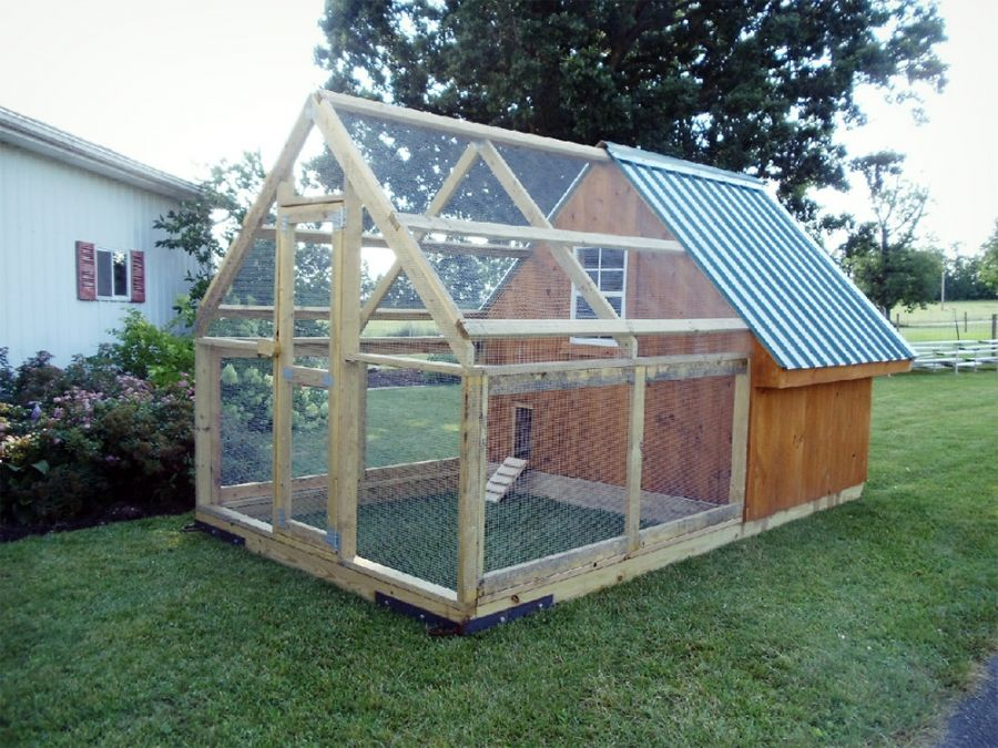 Pin by Victoria Vines on Chickens Chickens backyard