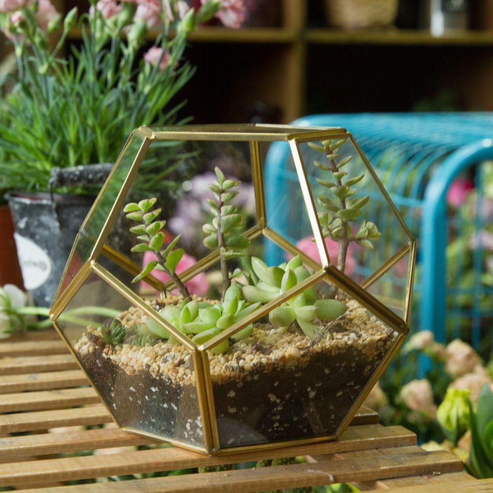 Sphere Gold Copper Brass Glass Geometric Terrarium Pentagon Ball ...
