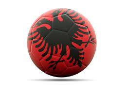Image result for albania flag