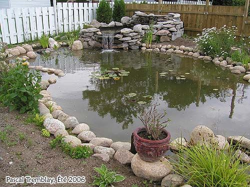 Step By Step Instructions On How To Build A Small Pond Or Water
