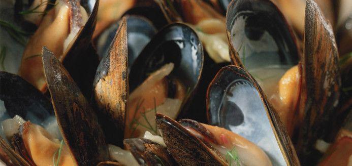 Mussels in White Wine Recipes   Ricardo