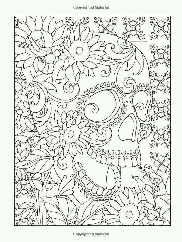 Famoso Imágenes De Marmota Para Colorear Composición - Dibujos Para ...