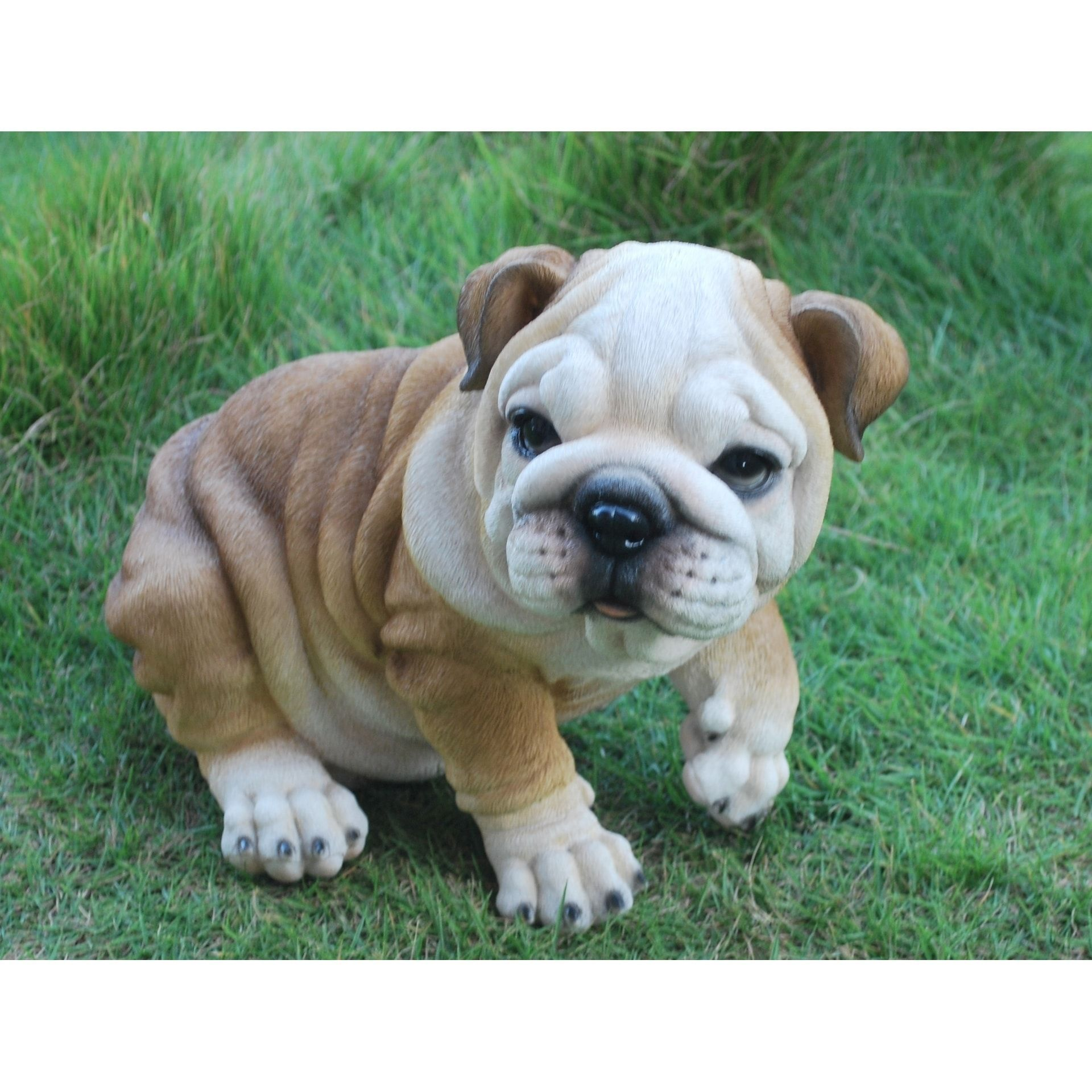 Bulldog Puppy Polyresin Outdoor Decor Bulldog Puppies Puppies