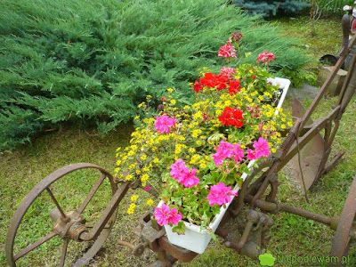 Maszyny Rolnicze Jako Kwietniki Pomysly Plants