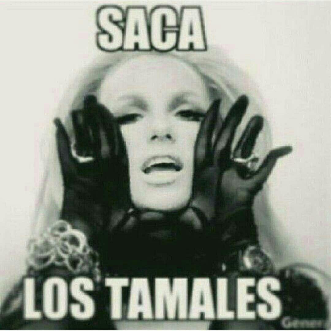 Jajajaa Memes De Tamales Tamales Tamales Dulces