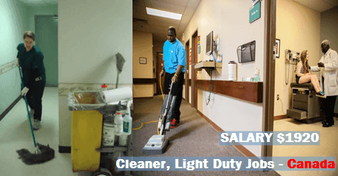 Cleaner Light Duty For Man Female Jobs In Canada Job