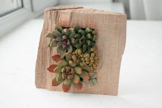 Green Succulent Decor Decoration Wood Frame Base Basis Planted Succulents  Cactus Home Decor Accessory Housewarming Birthday