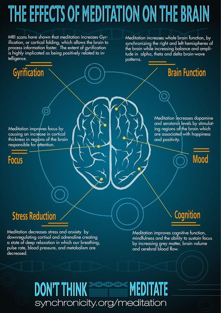 Meditation and the Brain | Meditation | Pinterest | Brain, Yoga and ...