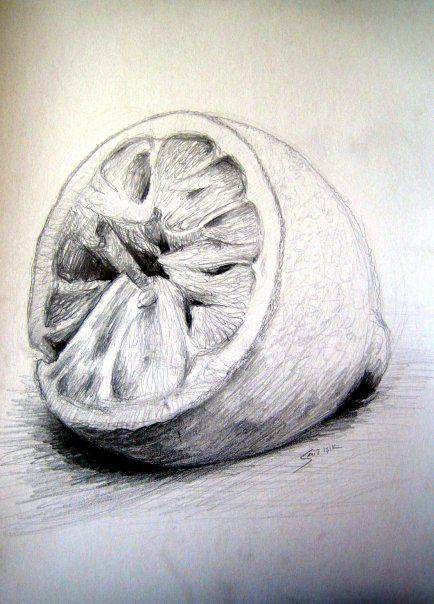 Sikilmis Limon Karakalem Sanat Egitimi Sanat Desenler
