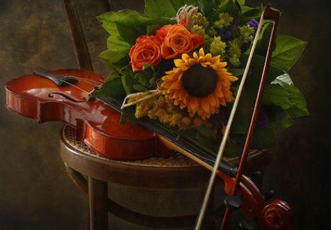 Violin and Sunflowers HD Desktop Wallpaper