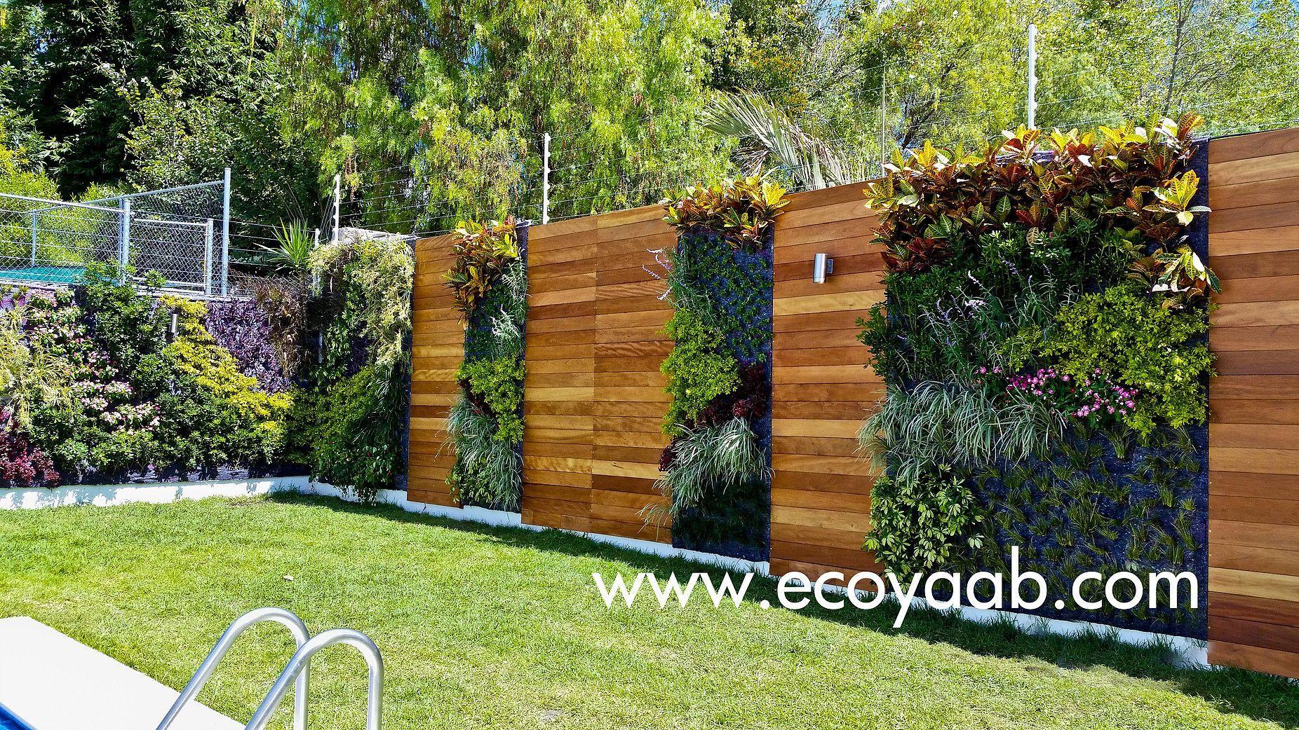 Muro vegetal y entramado de madera mcpc en 2019 muros - Muros de jardin ...
