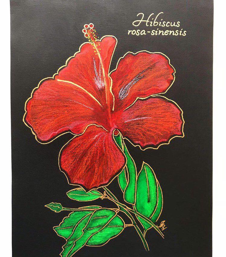 Hibiscus Flower Original Oil Pastel Painting Painting Red Art Etsy Flowers Oilpastelart Redflowerart Pu Flower Artwork Oil Pastel Oil Pastel Paintings