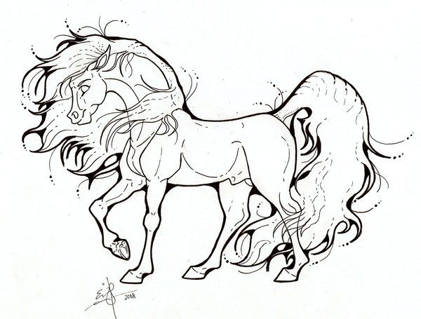 Arabian Stallion Lineart By Spiderwick19 On Deviantart Horse