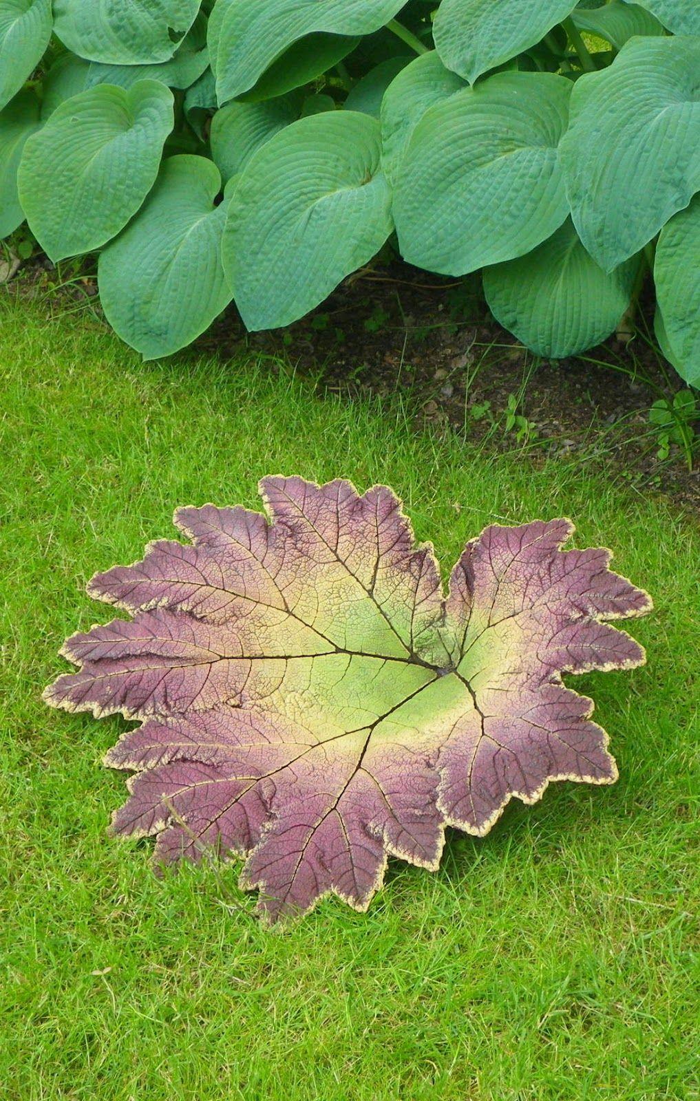 Concrete Leaf Castings Concrete Garden Garden Crafts Concrete Leaves