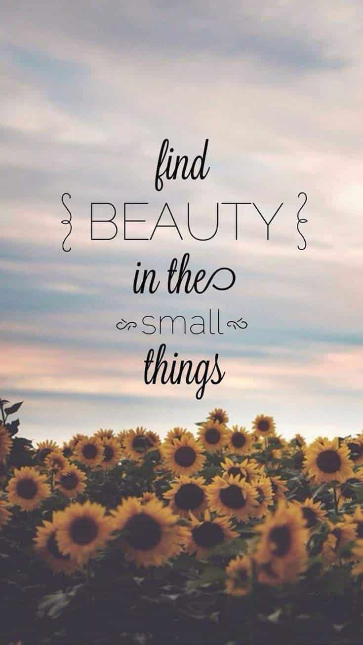 Small Life Quote Quotes  Small Things And Inspirational