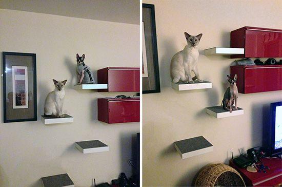 Easy catification cat climbing shelves with style gato - Arbol gato ikea ...