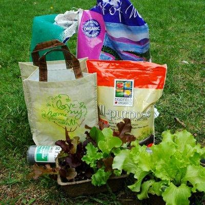 How To Grow Lettuce In A Reusable Grocery Bag Container