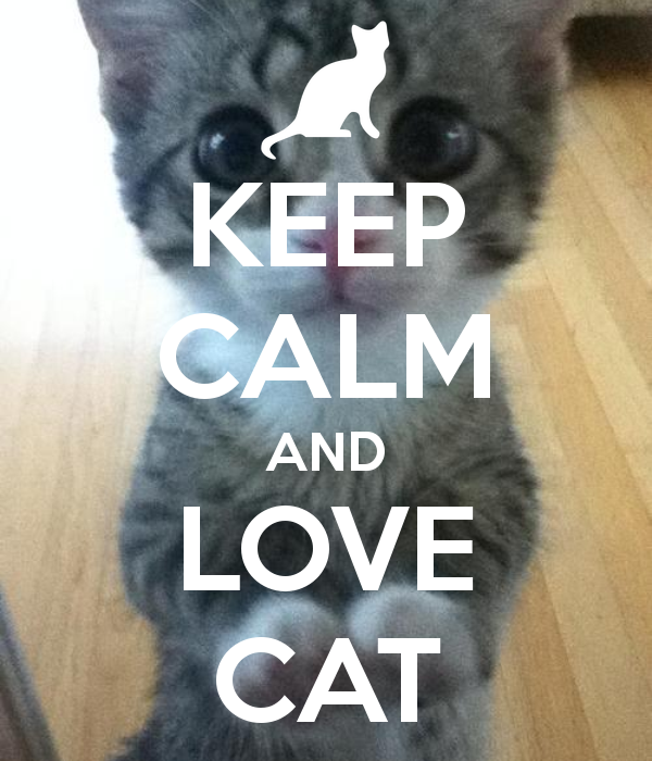 Pin by Anime Cat on Cuteness!!! Keep calm and love, Keep
