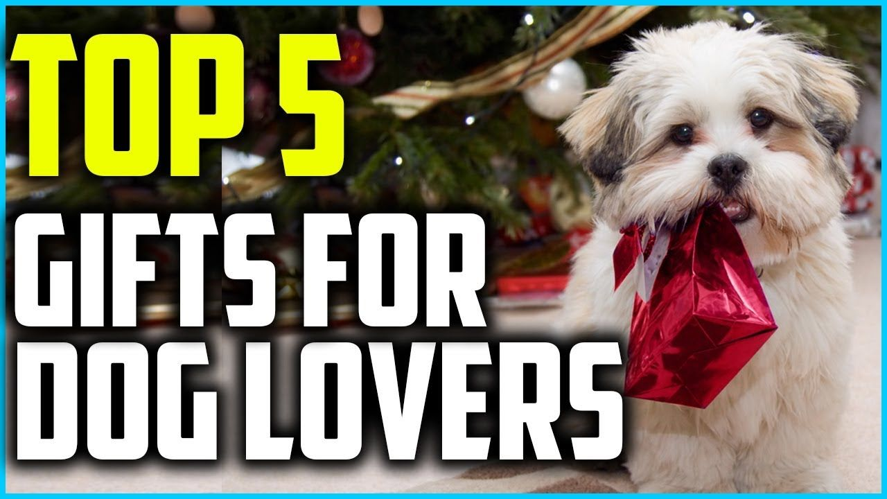 Top 5 Best Gifts for Dog Lovers in 2020