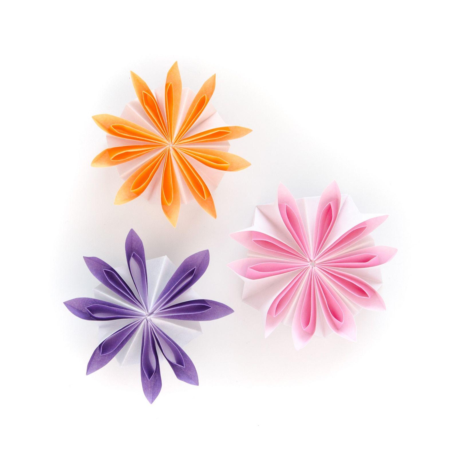 Matricaria Origami Flowers Botanical Pinterest Modular