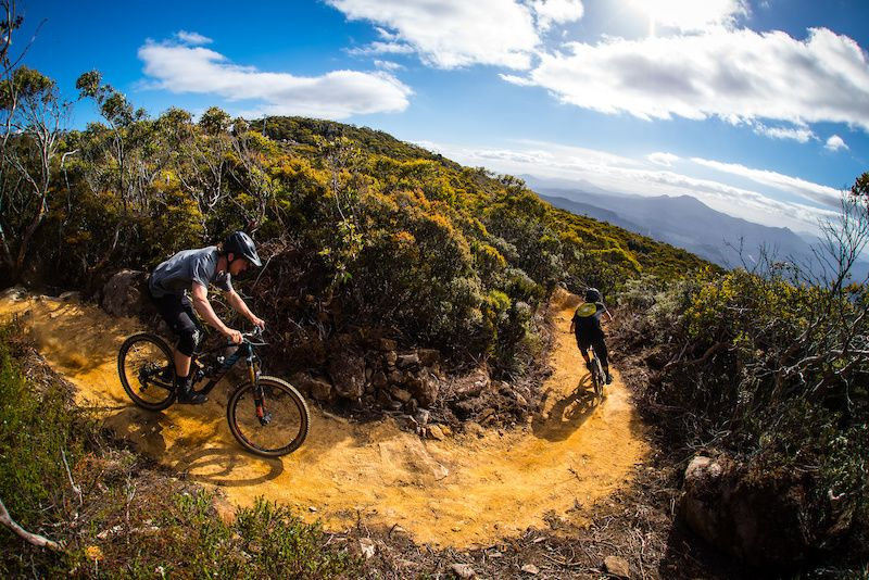 Tasmania Australia S Mountain Bike Wonderland Destination