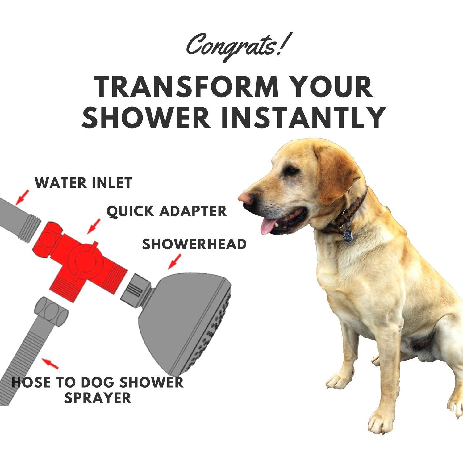 Packsfield Dog Shower Sprayer For Pet Bathing In Bath Tub