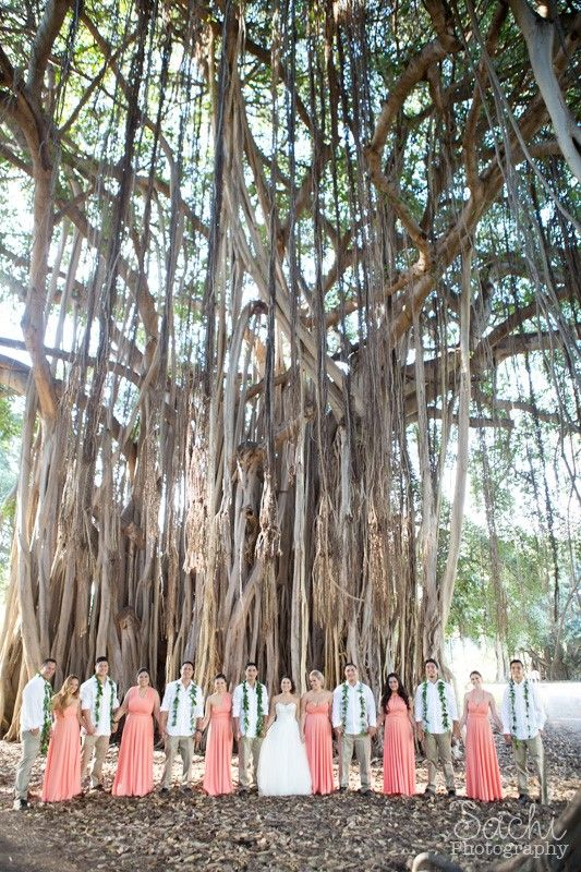 Waimea Plantation Cottages Roadside Banyan Tree Provides Excellent Photographs Photo Credit Sachi Photography
