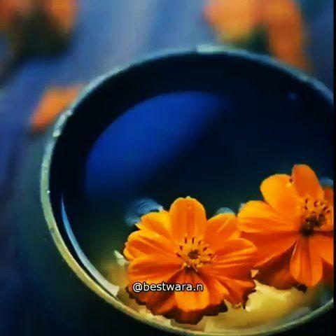 🍁🍁🍁 #bestwara_galeri _____  #ceramahislam  #ceramah #ustadabdulsomad  #ustadkhalid  #ustadzadihidaya...