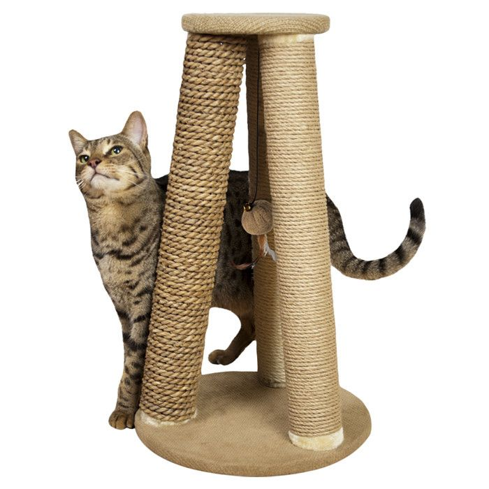 Scratching Post.