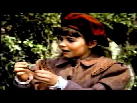 The Secret Garden 1987 YouTube in 2020 Secret garden
