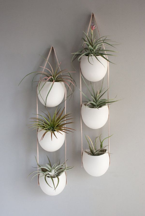 15 Adorable Indoor Hanging Garden That Will Your Mind Top Inspirations