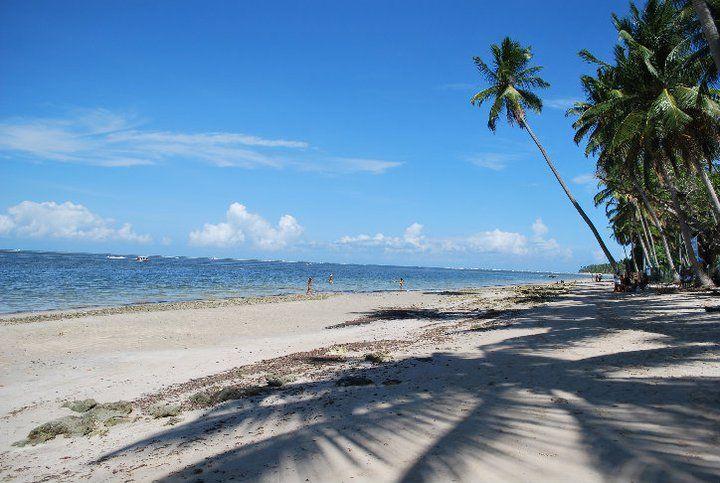 Brazil - Pernambuco - Recife - Praia dos Carneiros  by Erica Kaneko