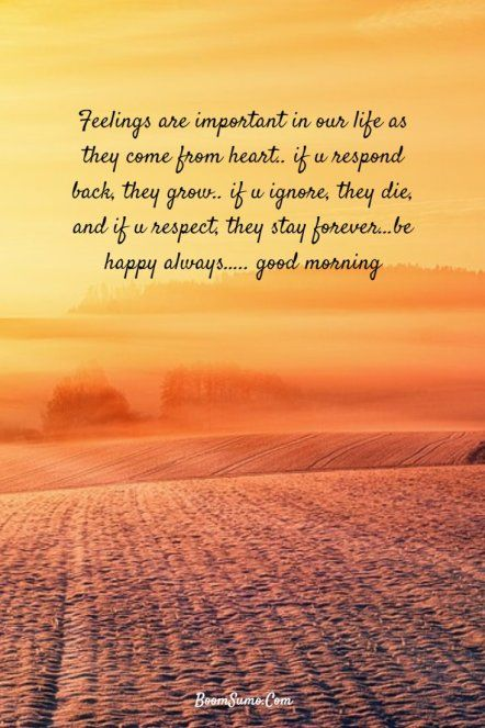 Good Morning Happy Life Quotes: 147 Beautiful Good Morning Quotes Sayings About Life 130