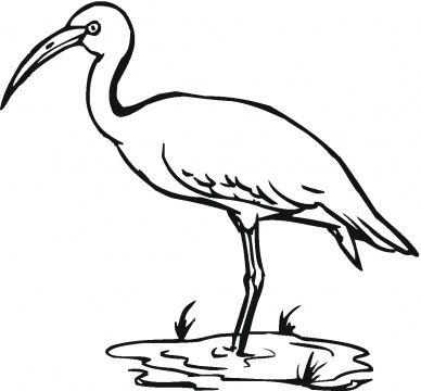 Crane Bird Coloring Page Bing Images Bird Coloring Pages