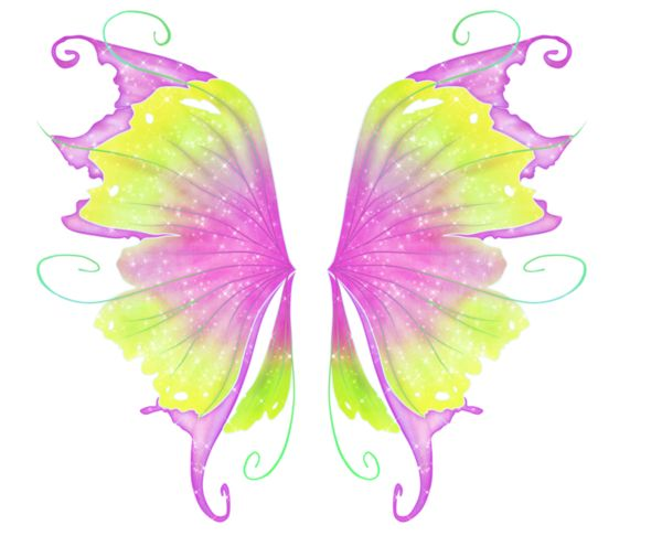 Бабочка buterflie