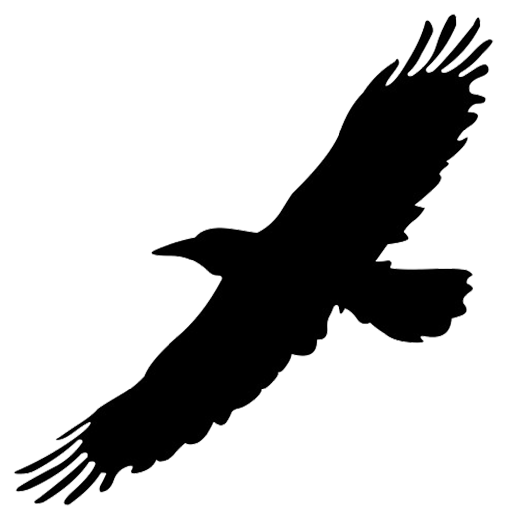46 Free Vector Flying Birds Silhouettes Flying Flying Bird Bird Png Transparent Image And Clipart For Free Download Flying Bird Silhouette Birds Flying Bird Silhouette