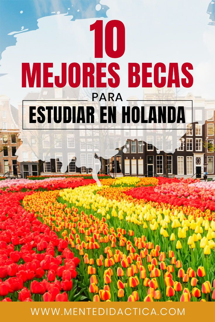 Descubre Las 10 Mejores Convocatorias De Becas Para Estudiar En Holanda Becas Becasuniv Becas En El Extranjero Estudiar En El Extranjero Becas Universitarias