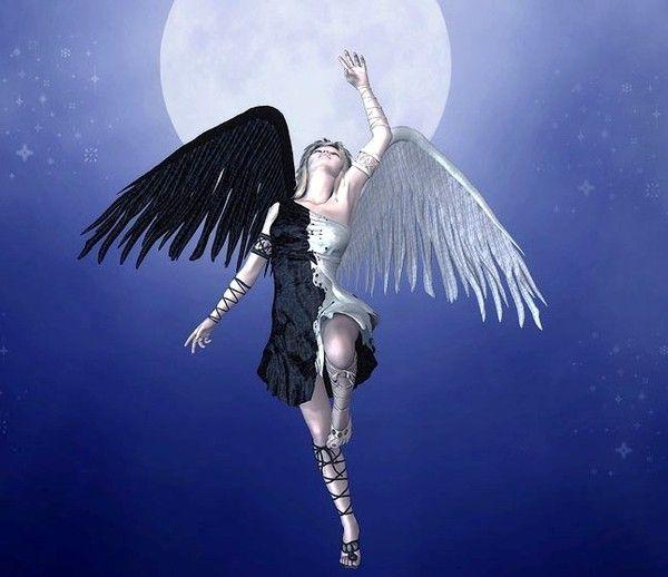 Ange mi noir mi blanc angel and fantasy art - Dessin ange demon ...