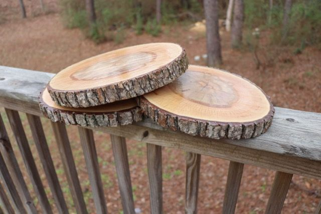 Treated Wood Slices 10 Inch Rounds Slice Centerpieces