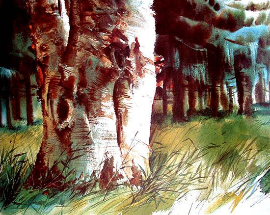 Zoltan Szabo Watercolors Watercolor Portraits Watercolor Trees