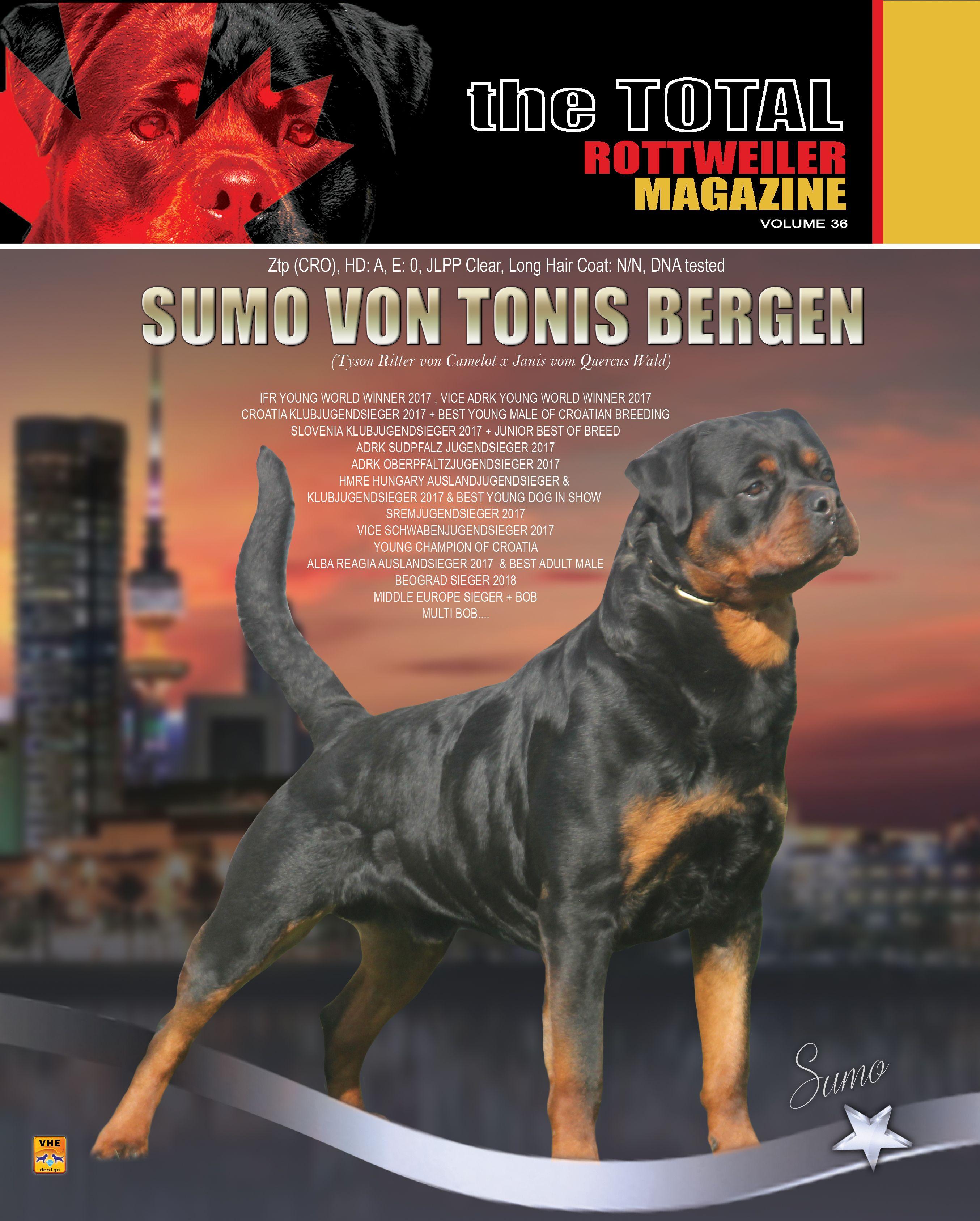 Volume 36 Released Late June Stud Dog