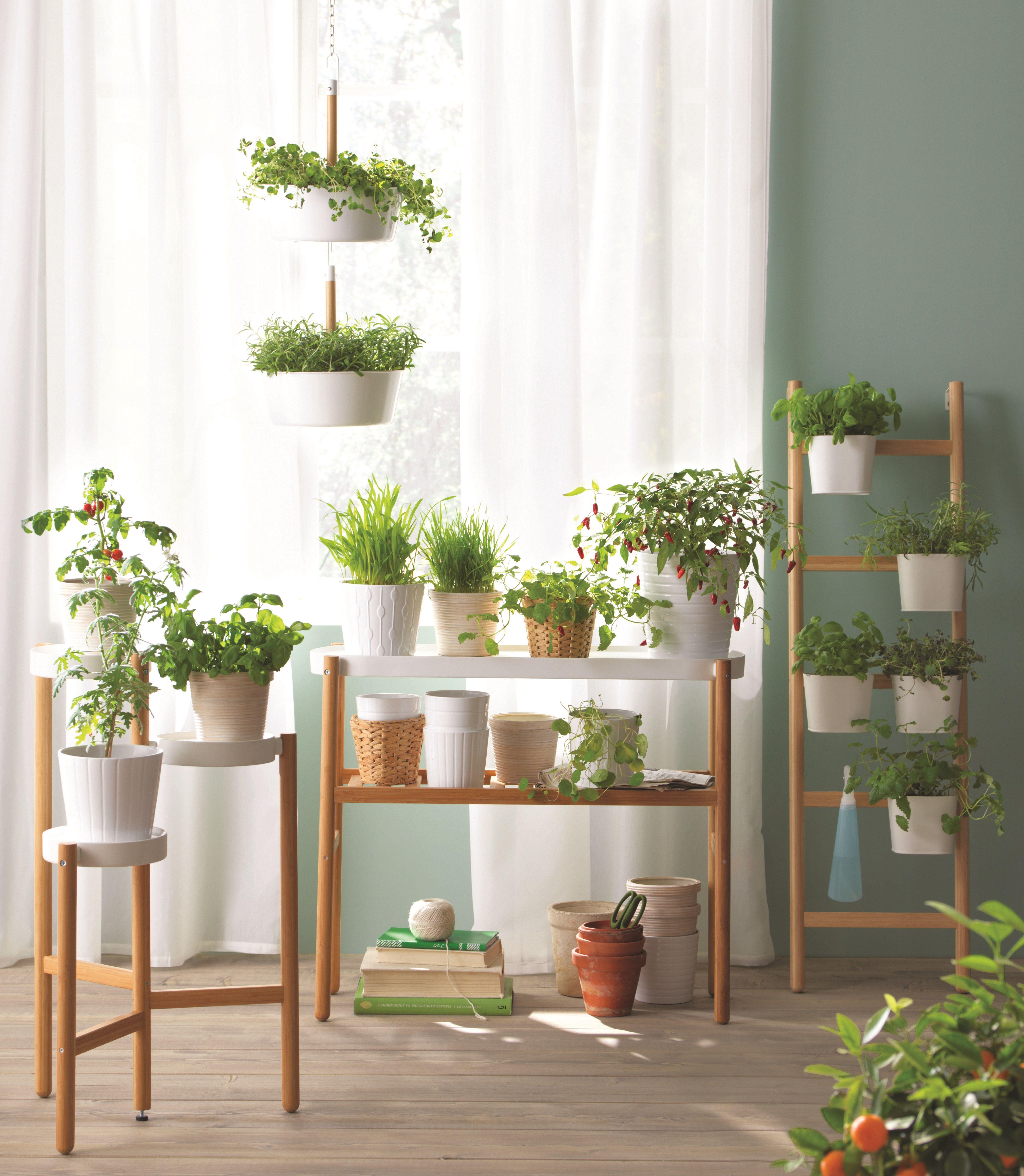 tout ce qu 39 il vous faut pour cr er un int rieur vert laissez place au vert pinterest. Black Bedroom Furniture Sets. Home Design Ideas