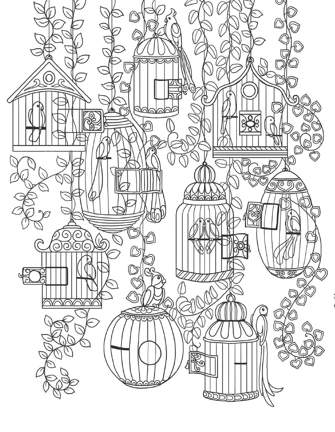 9782815307062 ext | Jaulas de pájaros, Libros para colorear y Libro