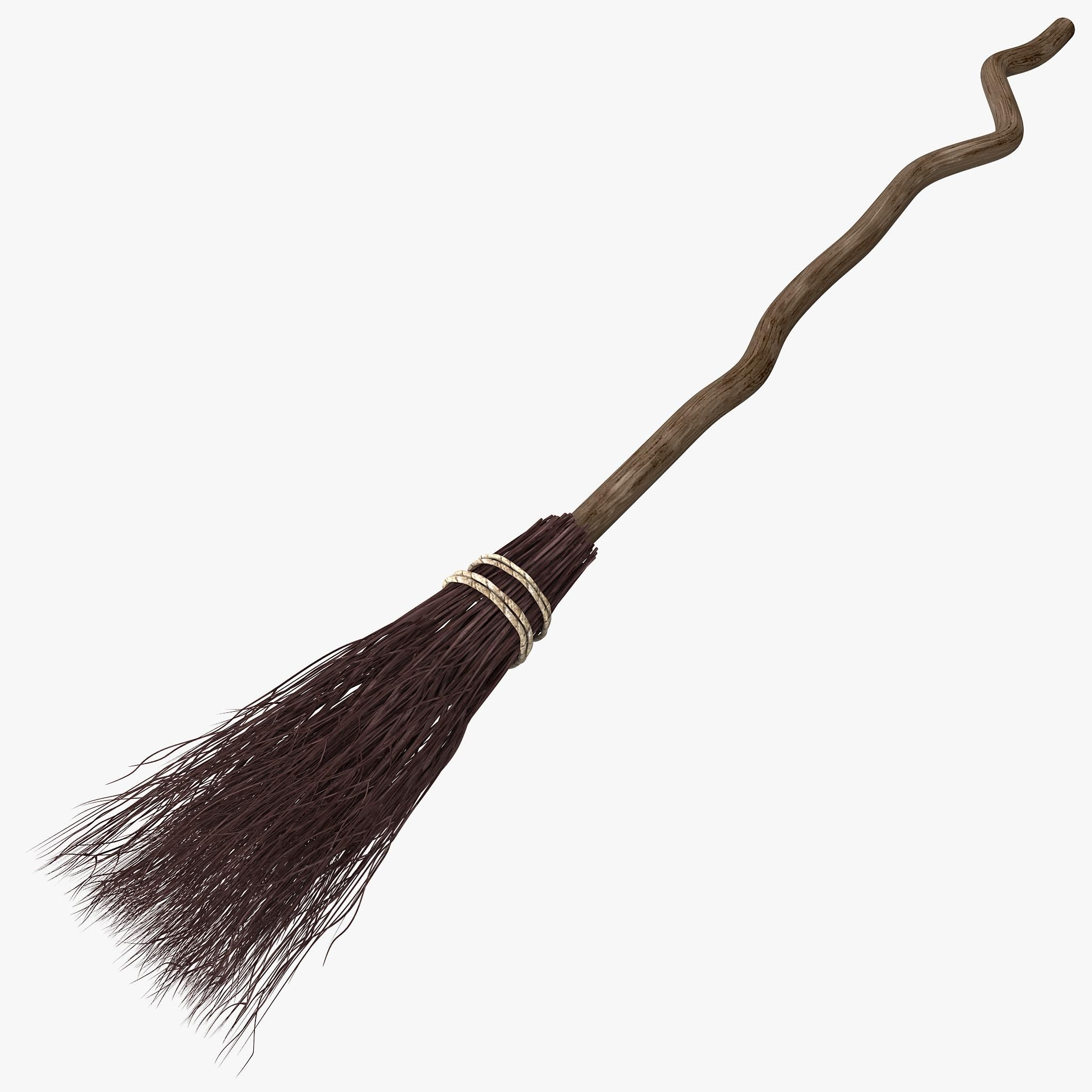 Deluxe Black Feather Witch Broom Stick