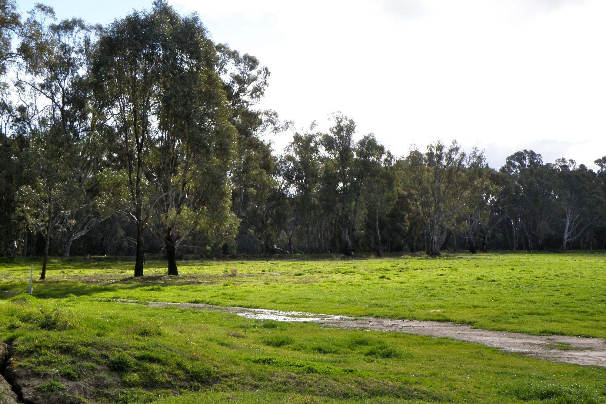 River Front Land for Sale www.riverestate.com.au