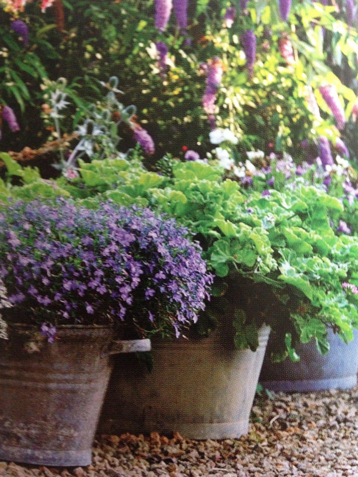 SIMPLY SCANDINAVIAN Garden containers, Garden, Garden pots