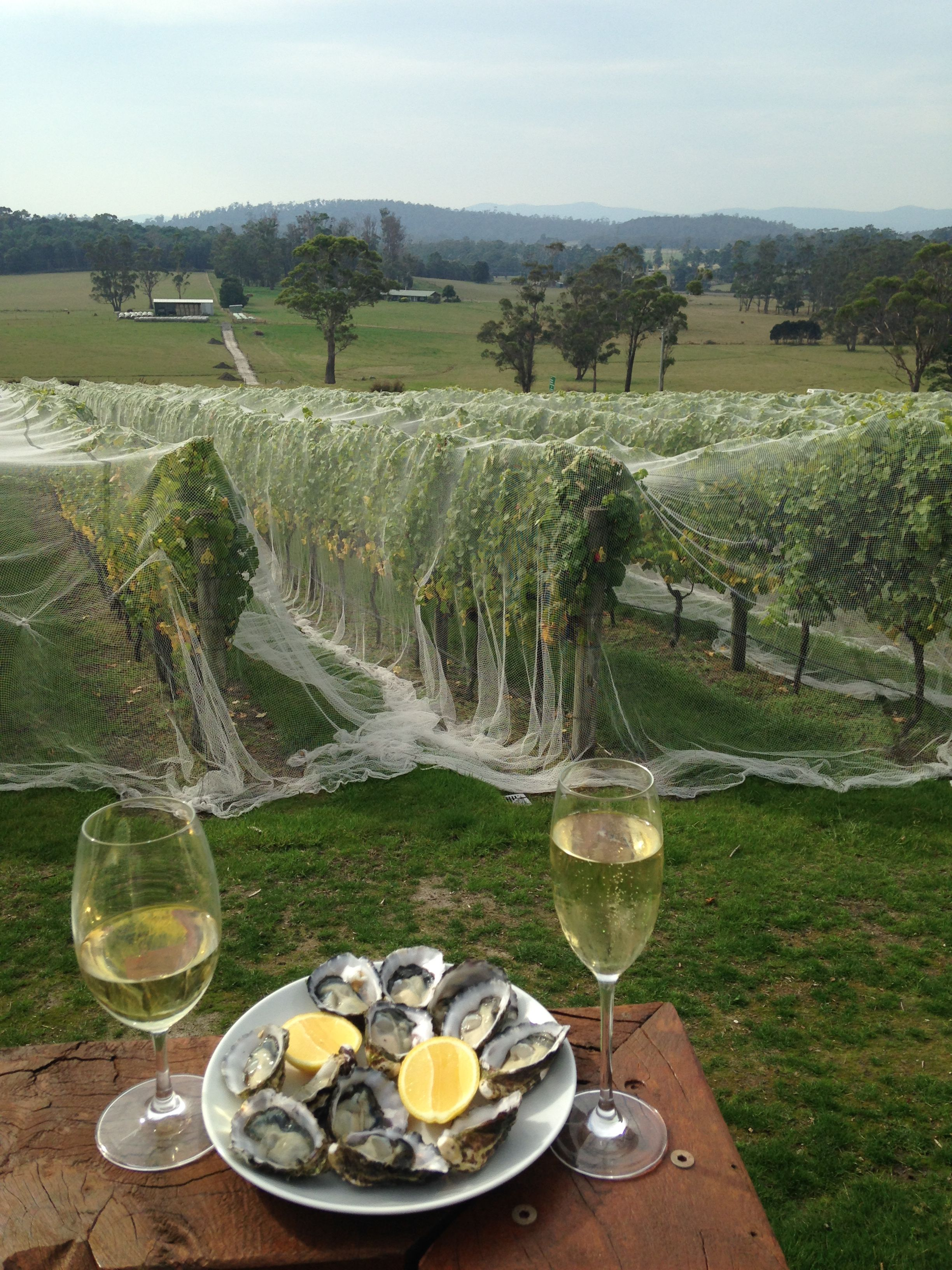Join us at the cellar door for tassie oysters u wine over easter
